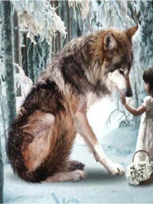 diamont-art-Κοριτσάκι/λύκος