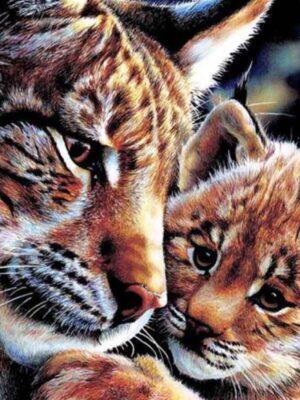 diamont-art-tigris